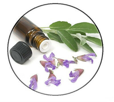 NEW Officinale sage essential Oil - Organic