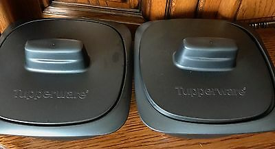 2 Ultrapro Tupperware 500 Ml Ultra Pro Four/micro Ondes