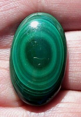 Cabochon pierre fine en Malachite 29x18x7 mm