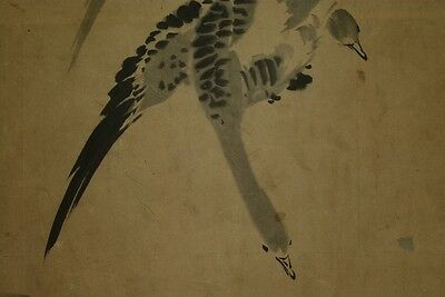 Japanese Painting Scroll Japan 興碩 狩野 Wild goose art ink Antique Old Picture s32