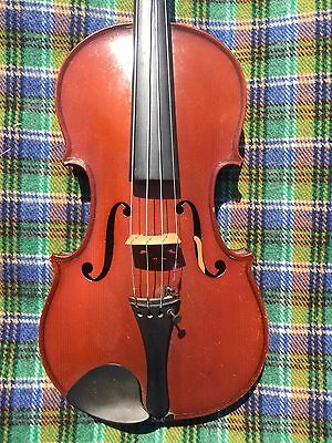 Violin Violon Geige Carelle