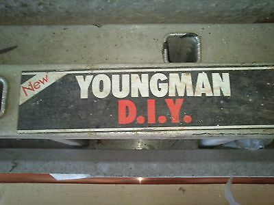 Youngman Aluminium double extension ladder  2 X 3m and Standoff