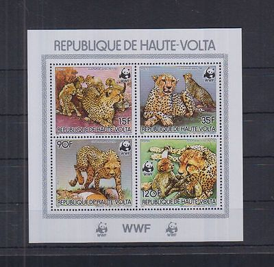 8W Haute Volta - MNH - Nature - Animals - Wild Cats - WWF
