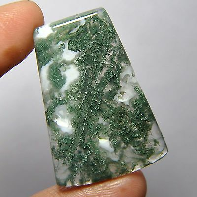 33.20 Cts 100%Natural Green Moss Agate Fancy Cabochon Loose Gemstone 4-H