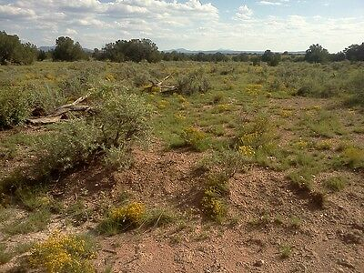 Raw Land for Sale by Owner - just over 1 acre in Williams, AZ