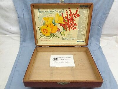 Antique Mandevill & King Co. Flower Seeds Wood Box