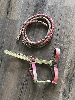 Miniture Rainbow Halter and Lead Set
