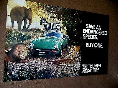 "Original British Leyland 75/76 Triumph Spitfire Factory Dealer Poster 35"" by 28"""