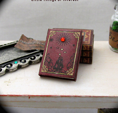 DIARY OF GALILEO Miniature Book Dollhouse 1:12 Scale Book Dead Men Tell No Tales