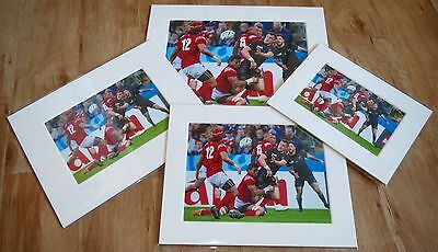 """2015 Rugby World Cup All Black Dan Carter 7""""x5""""/ 10""""x8"""" Mounted Print"""