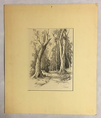 Original Pencil Drawing by Harry Sennett Untitled Bush track Landscape