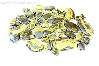 Assorted Schalenblende Mix Cabochon 1000cts Bulk Loose Gemstone Gems