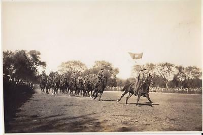 Fort Riley Kansas Cavalry Training School Archive Collection Horses