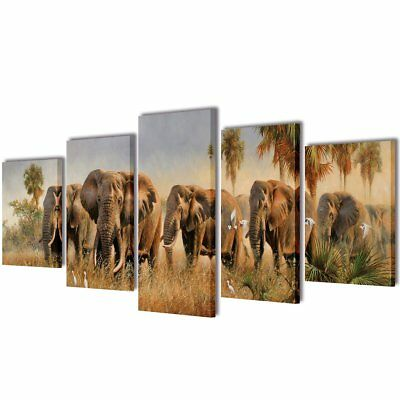 # Set of 5 Elephant Canvas Prints Framed Wall Art Decor Painting 100x50cm Bedroo
