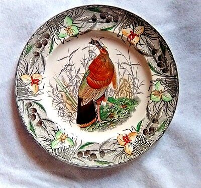 Adams China Plate Birds of American Wild Turkey hand painted w/flowered rim