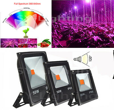 20/30/50W Flood Light driverless 400-840nm Full Spectrum COB Led Outdoor Lamp