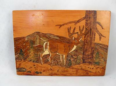 Vintage Folk Art White Tail Deer Carving Painting On Wooden Board Plaque