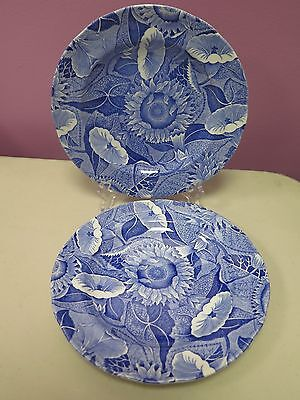 "2 Spode Blue Room Collection ""SUNFLOWER"" Salad Plates - Rare"