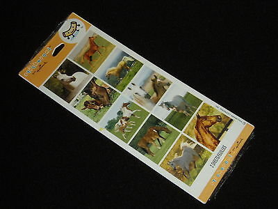 Stickeroni Horse Stickers (2 Sheets Pkg) Made in USA