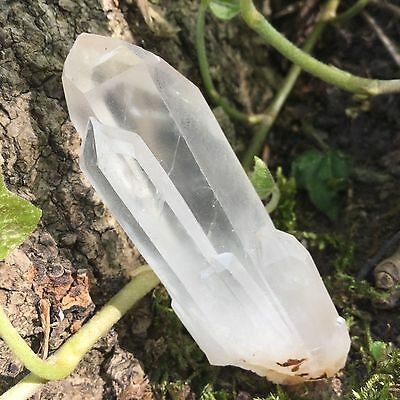 52g Clear Lemurian Seed Quartz Natural Crystal Cluster Energy Healing Specimen