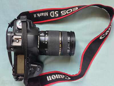 Canon 5D Mark II & Tamron 28-75mm F/2.8 Macro Lens & Flash