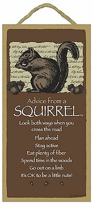 Advice from a Squirrel Inspirational Wood Nature Animal Sign Plaque Made in USA
