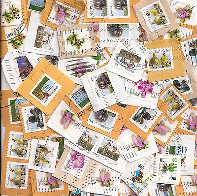 CHV-4 Mix of 50 High value Canada used stamps on and off paper