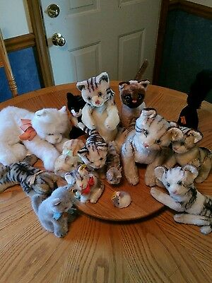 Steiff kitty cat collection of 15