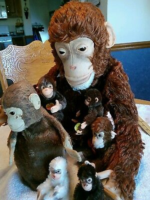 Collection of vintage Steiff monkeys ff button!
