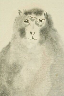 Hanging Scroll Japanese Painting Monkey Ink Persimmon Japan Antique Picture b529