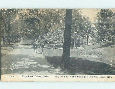 Unused Divided-Back PARK SCENE Lima Ohio OH hk8975