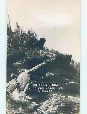 Old rppc SINGING BIRD AT SMUGGLERS NOTCH Cambridge & Jeffersonville VT HM2774