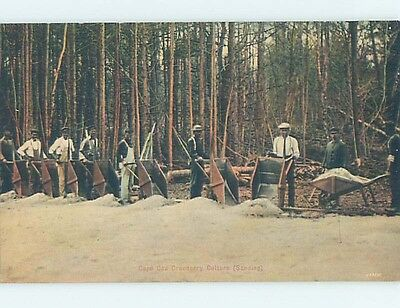 Unused Divided-Back POSTCARD FROM Cape Cod Massachusetts MA HM5638