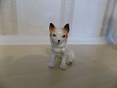 "russian ussr lomonosov small 2"" dog"