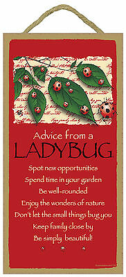 Advice from a Ladybug Inspirational Wood Nature Sign Plaque Made in USA