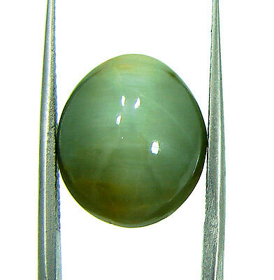 6.60 Ct Natural Cats Eye Loose Gemstone Cabochon Untreated Stone - 315