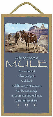 Advice from a Mule Inspirational Wood Nature Animal Sign Plaque Made in USA