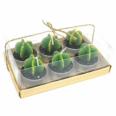 Cactus Candles Set Of 6 Monks In Gift Box 3 Hours Burning Time