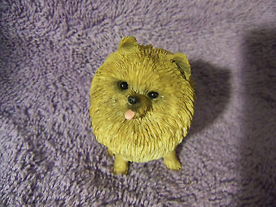 "Cute Orange Pomeranian ""sandicast"" Hand Cast And Hand Painted"