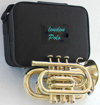 Brass AAA Quality Gold Lacquer Pocket Trumpet Cornet Large bell Horn with Box