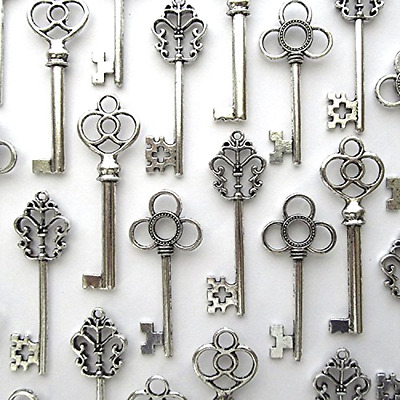 Skeleton Keys in Antique Silver Mixed Set of 30 Large  Salome Idea Metal Alloy