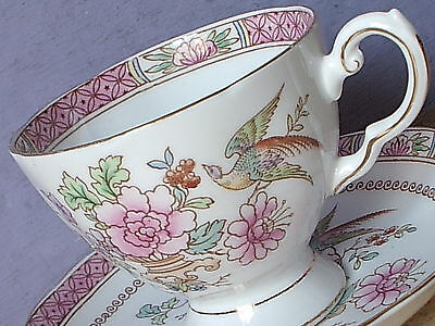 Vintage Hand Painted pink bird of Paradise English bone china tea cup teacup