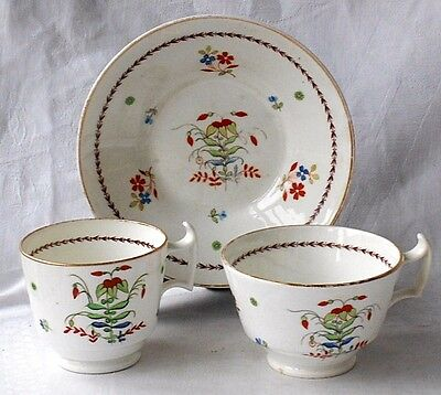 C19Th Coalport Hand Painted Trio With A Sparse Floral Pattern