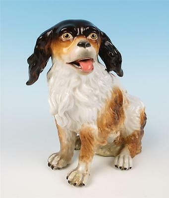Antique Meissen or Dresden Porcelain KING CHARLES SPANIEL Dog Figurine Cavalier