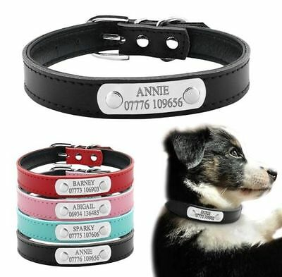 Personalised Leather Dog/Cat Collar - Custom Engraved Pet ID Name + Number Laser