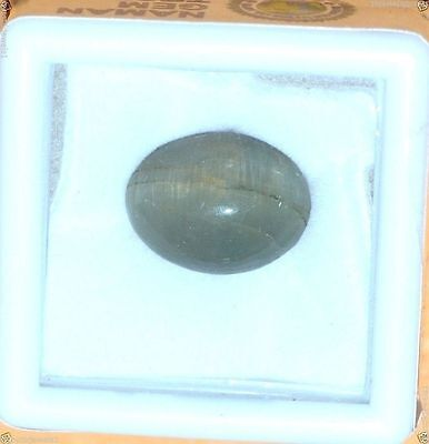 6.28Cts 100% Certified Natural Cats Eye Oval Cabochon Gemstone  Oct31-06