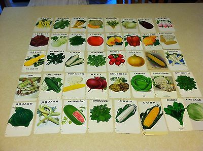 Lot of 40 Vibrant Vtg Stecher Traung Schmidt Seed Packets Unused Vegetables