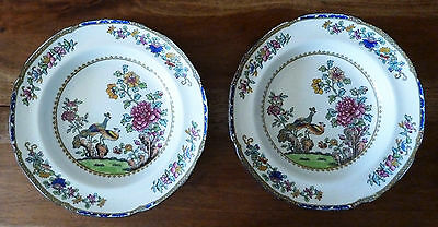 """Antique Copeland Late Spode Soup Bowls in Pattern #2118 """"Peacock"""" - 10"""" Diameter"""