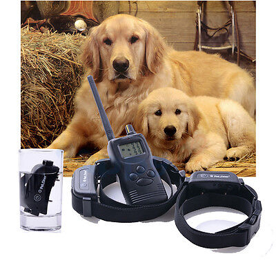 Dog Training Collar w/Remote Rechargeable 1000M Hunting M/L/XL Dog For 2 Dogs‏