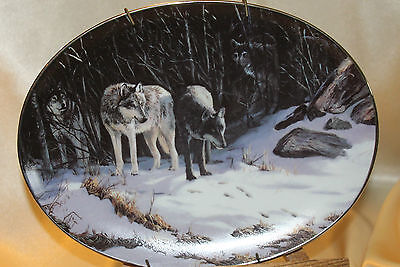 Bradford Exchange Collector Plate Wolf The Trackers Winter Shadows #4183A